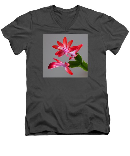 Natural Beauty Men's V-Neck T-Shirt