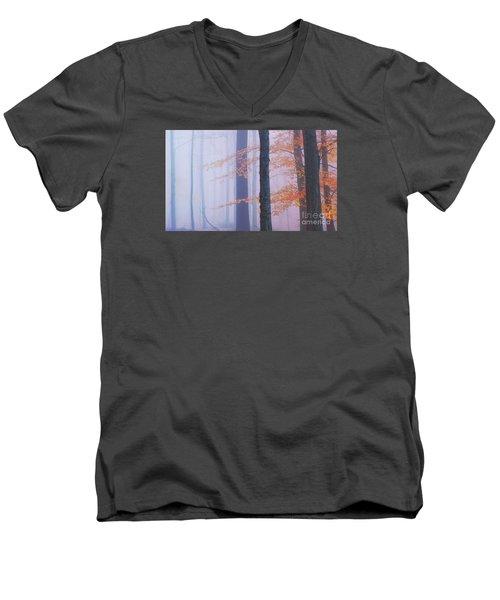 Natural Bliss Men's V-Neck T-Shirt