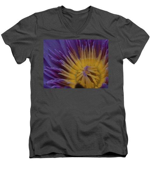 Natural Colors Men's V-Neck T-Shirt