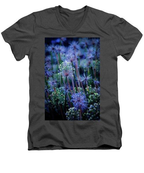 Natural Fireworks 4791 H_2 Men's V-Neck T-Shirt