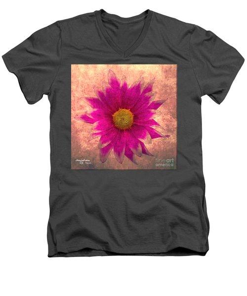 Nature Beauty Men's V-Neck T-Shirt