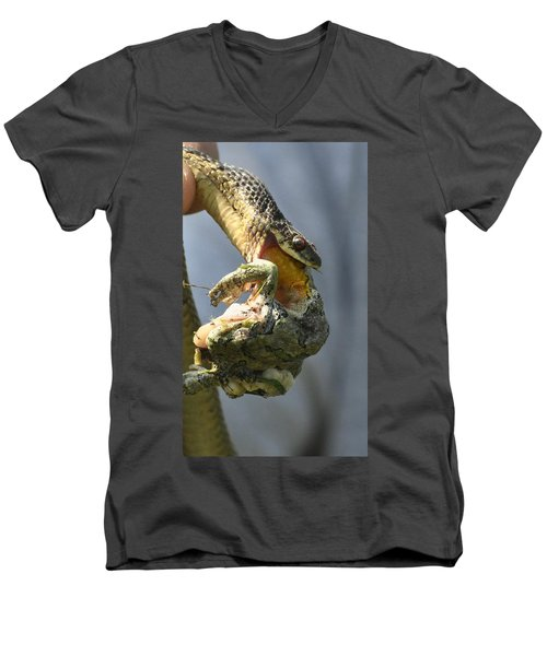 Nature Is Beguiling Men's V-Neck T-Shirt by Lisa DiFruscio