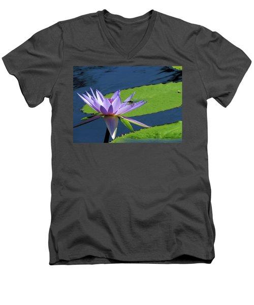 Nature Shares It's Beauty Men's V-Neck T-Shirt