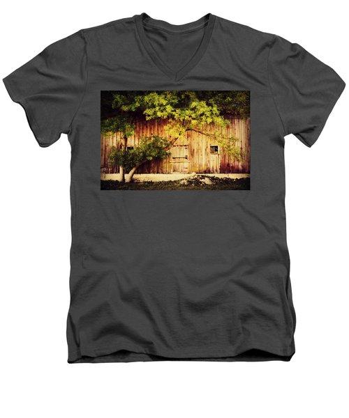 Natures Awning Men's V-Neck T-Shirt by Julie Hamilton