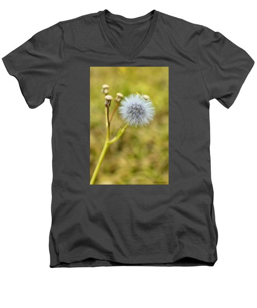 Men's V-Neck T-Shirt featuring the photograph Natures Beauty 00001 by Kevin Chippindall