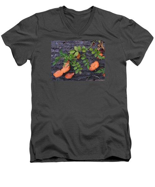 Nature's Beauty Men's V-Neck T-Shirt by Christine Lathrop