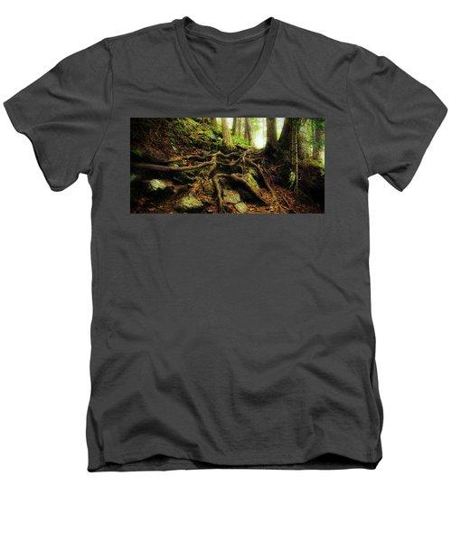 Nature's Cauldron Men's V-Neck T-Shirt