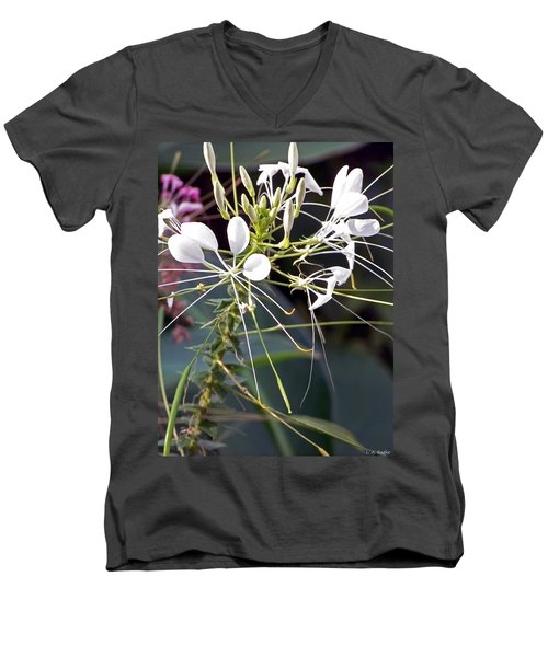 Nature's Design Men's V-Neck T-Shirt by Lauren Radke