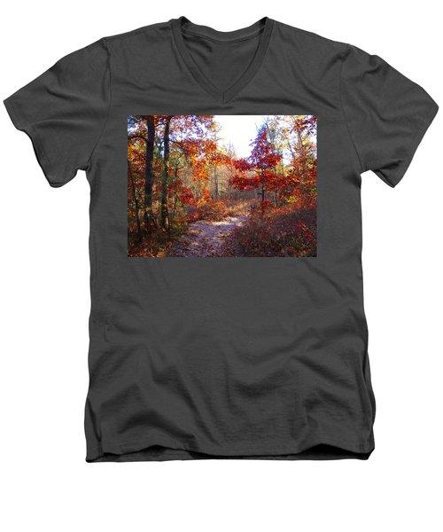 Nature's Expression-17 Men's V-Neck T-Shirt