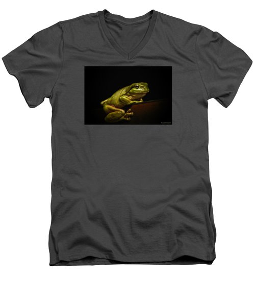 Natures Green 01 Men's V-Neck T-Shirt by Kevin Chippindall