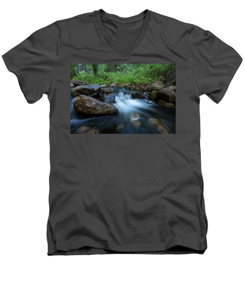 Nature's Harmony Men's V-Neck T-Shirt