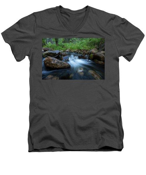 Nature's Harmony Men's V-Neck T-Shirt