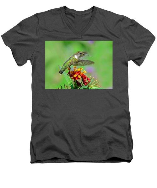 Nature's Majesty Men's V-Neck T-Shirt