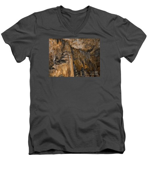 Natures Organ Pipes Men's V-Neck T-Shirt