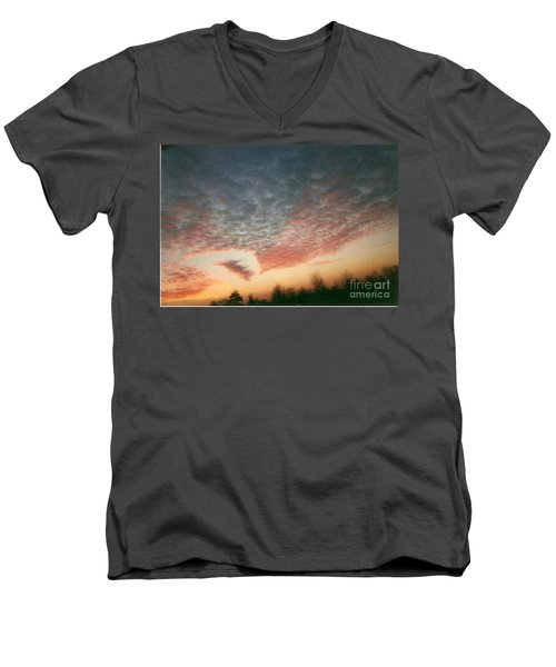 Natures Palette Men's V-Neck T-Shirt