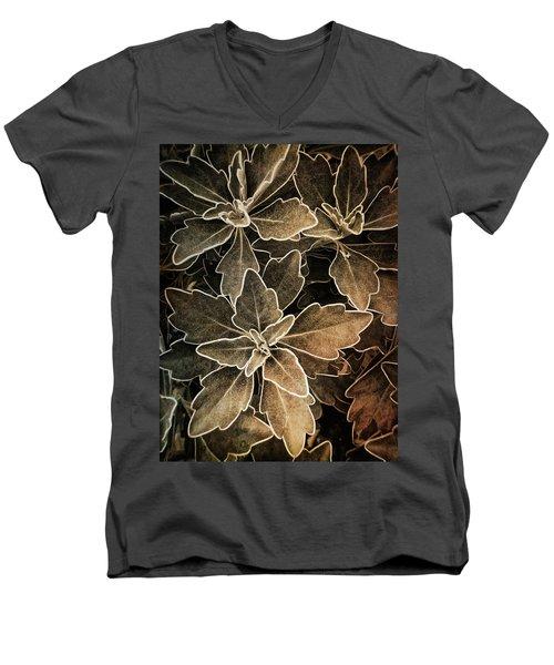 Natures Patterns Men's V-Neck T-Shirt