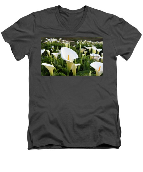 Natures Perfection Men's V-Neck T-Shirt