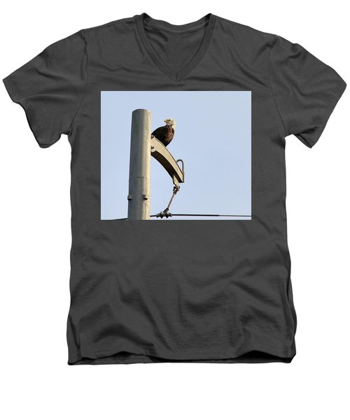 Nature's Philadelphia Eagle Men's V-Neck T-Shirt