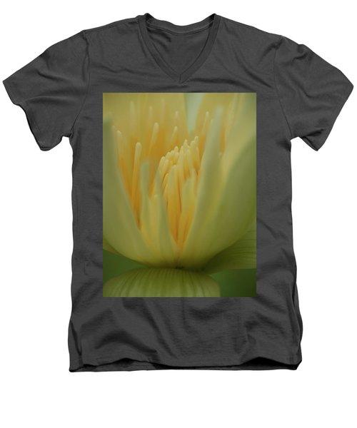 Natures Reflection Men's V-Neck T-Shirt