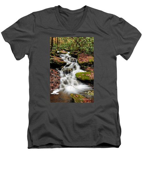 Natures Surprise Men's V-Neck T-Shirt by Debbie Green
