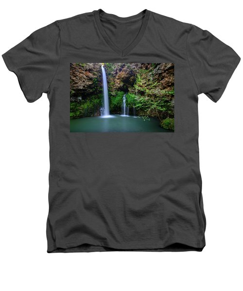 Nature's World Men's V-Neck T-Shirt
