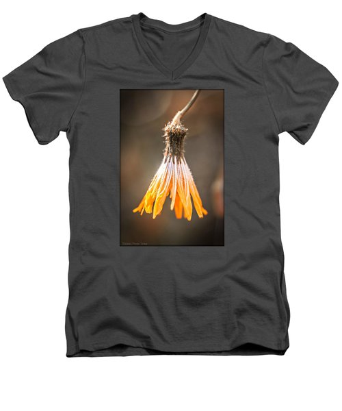 Men's V-Neck T-Shirt featuring the photograph Near The End by Michaela Preston