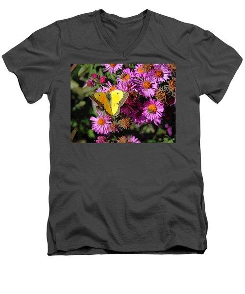 Nebraska City October 2015 Men's V-Neck T-Shirt