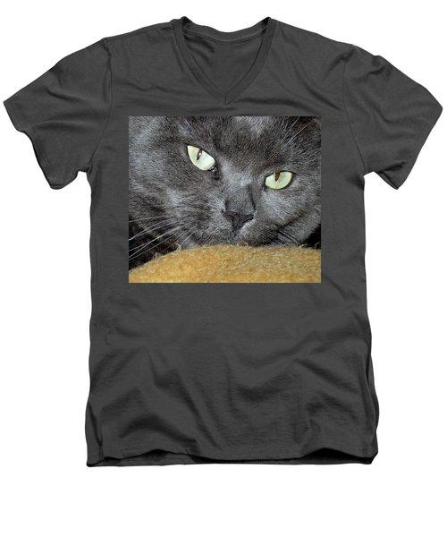 My Nellie-belle's Catitude Men's V-Neck T-Shirt