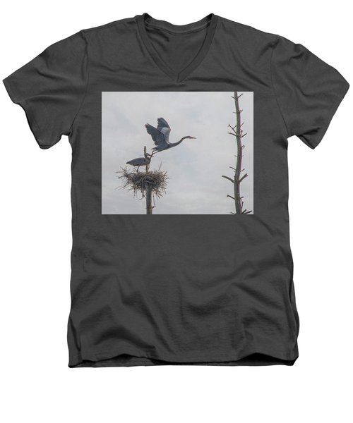 Nesting Great Blue Heron Men's V-Neck T-Shirt