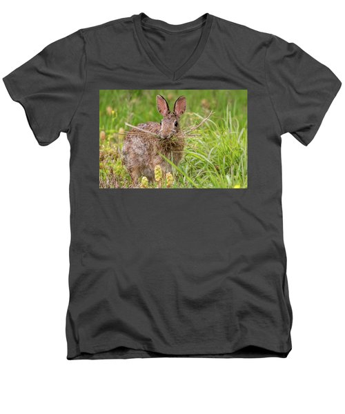 Nesting Rabbit Men's V-Neck T-Shirt by Terry DeLuco