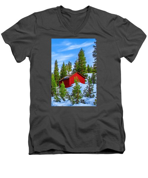 Nestled In Men's V-Neck T-Shirt