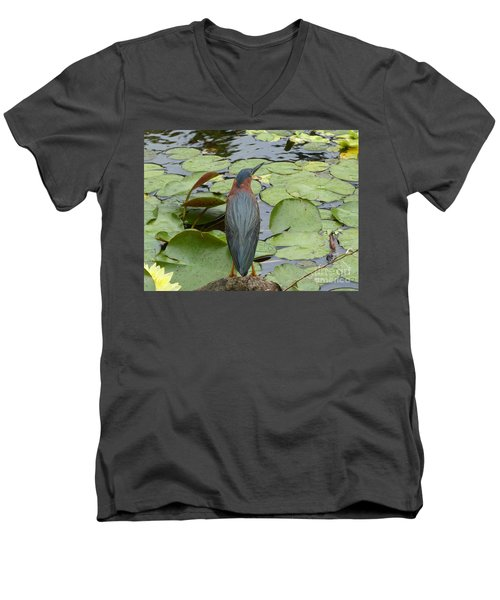 Nevis Bird Observes Men's V-Neck T-Shirt