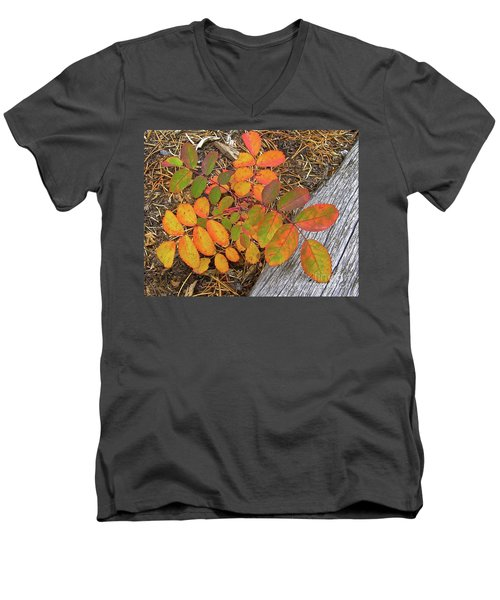 New And Old Life Cycles Men's V-Neck T-Shirt