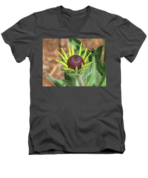 New Daisy Men's V-Neck T-Shirt by Michele Wilson