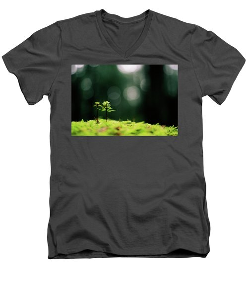 New Forest Men's V-Neck T-Shirt by Cathie Douglas