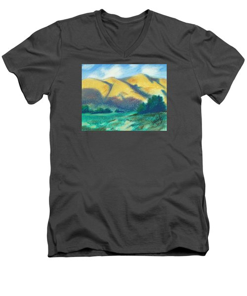 New Mexico Hills Men's V-Neck T-Shirt