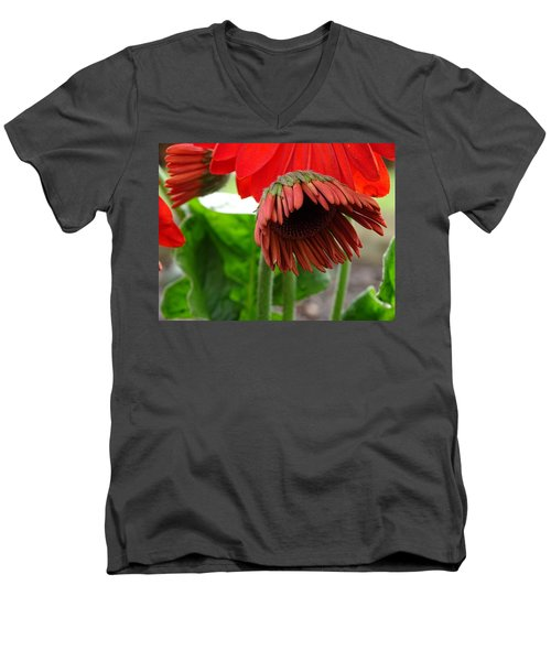 Newbie Men's V-Neck T-Shirt