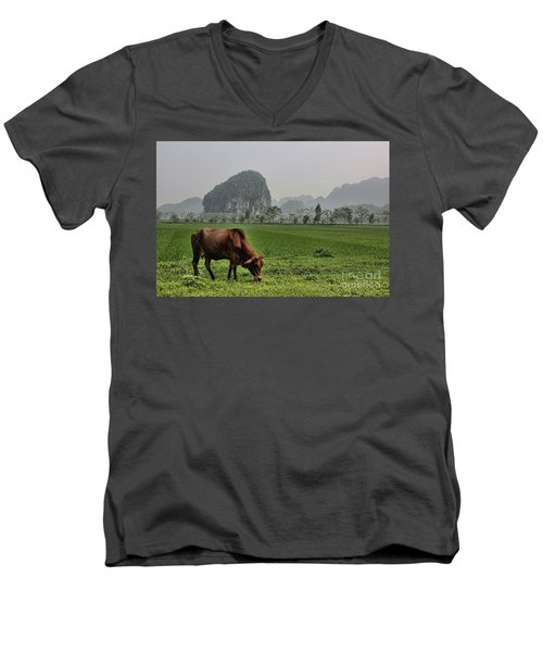 Ninh Binh Reserve  Men's V-Neck T-Shirt by Chuck Kuhn
