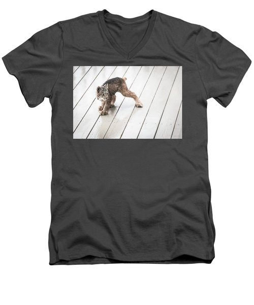Ninja Lynx Kitty Men's V-Neck T-Shirt