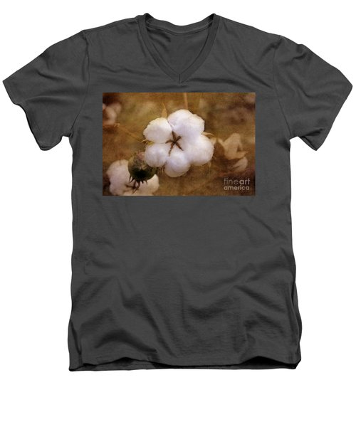North Carolina Cotton Boll Men's V-Neck T-Shirt by Benanne Stiens
