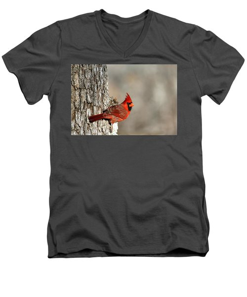 Northern Cardinal On Tree Men's V-Neck T-Shirt