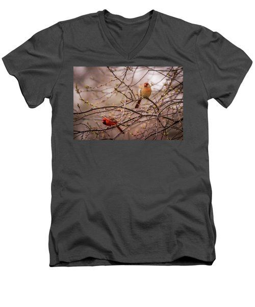Men's V-Neck T-Shirt featuring the photograph Northern Cardinal Pair In Spring by Terry DeLuco
