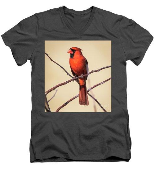 Northern Cardinal Profile Men's V-Neck T-Shirt by Ricky L Jones