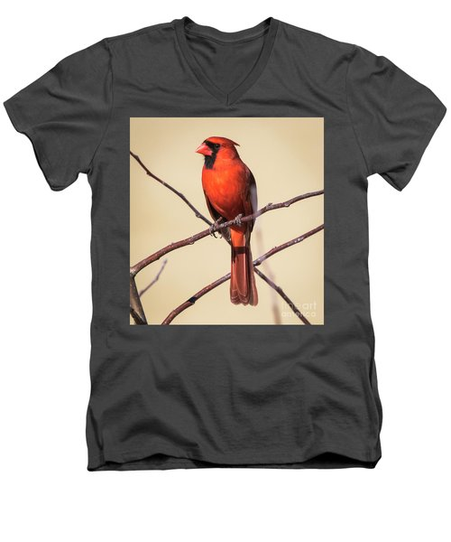 Northern Cardinal Profile Men's V-Neck T-Shirt