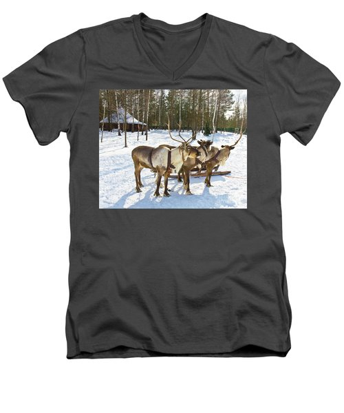 Northern Deers Men's V-Neck T-Shirt by Irina Afonskaya
