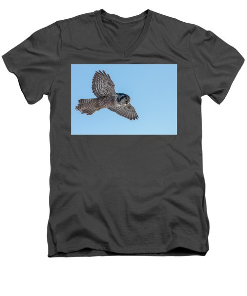Men's V-Neck T-Shirt featuring the photograph Northern Hawk Owl Hunting by Mircea Costina Photography