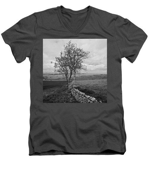Northern Ireland 19 Men's V-Neck T-Shirt
