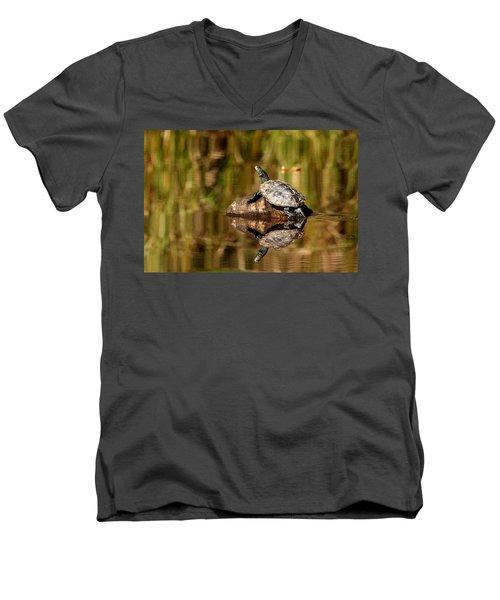 Northern Map Turtle Men's V-Neck T-Shirt