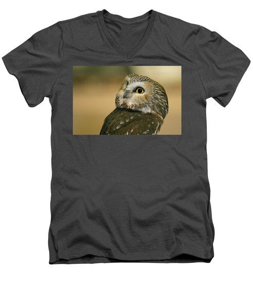 Northern Saw-whet Owl Men's V-Neck T-Shirt