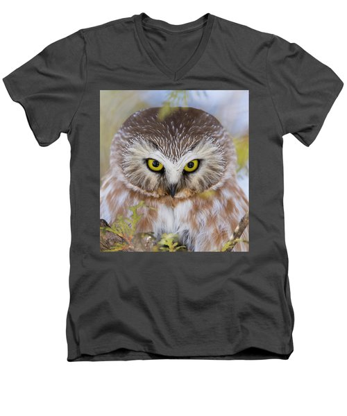 Men's V-Neck T-Shirt featuring the photograph Northern Saw-whet Owl Portrait by Mircea Costina Photography